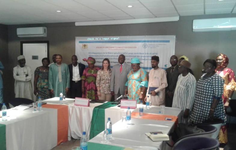 Tchad : trois provinces du centre bénéficient du développement de la filière spiruline