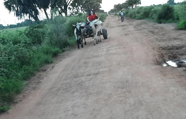 Coronavirus : l'avancée de la pandémie dans les zones rurales en Afrique inquiète