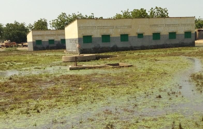 Rentrée scolaire : voici la situation de certaines écoles à N'Djamena plus d'une semaine après