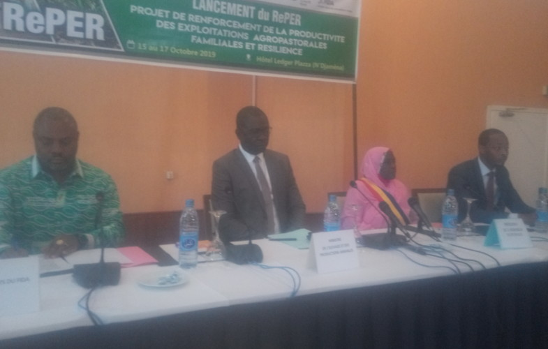 Tchad : le ministère de l'agriculture lance un projet pour la résilience agropastorale