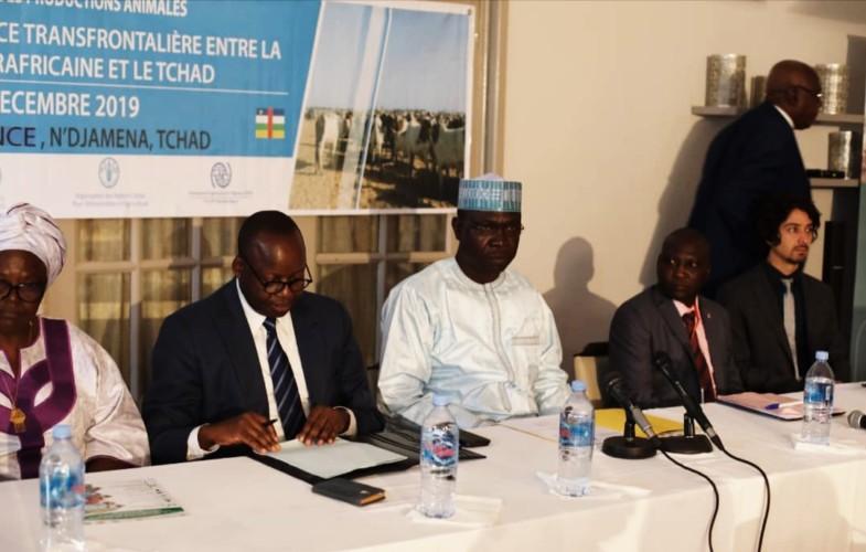 Diplomatie : N'Djamena et Bangui misent sur la transhumance transfrontalière