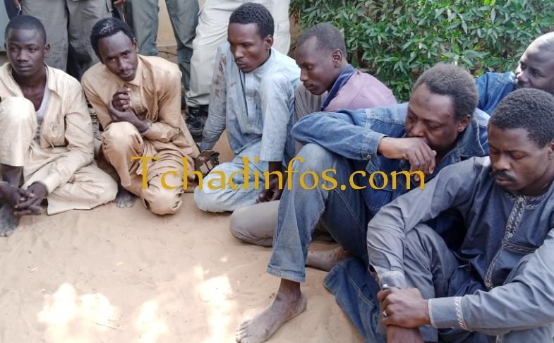 Tchad : sept braqueurs arrêtés par la Police nationale à N'Djamena