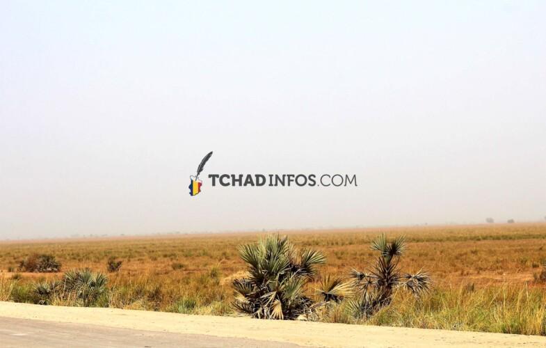 Tchad : Une fillette âgée de 6 ans est assassinée à Kelo