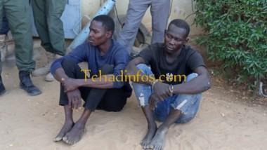 Tchad : deux présumés assassins de dame Mopi Célestine sont arrêtés
