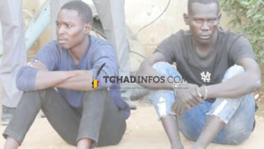 Tchad : les présumés assassins de Mopi Célestine  seront jugés immédiatement
