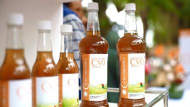 Covid-Organics : la priorité sera aux malades selon le ministre Mahamat Abali Salah