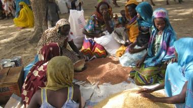 Insécurité alimentaire : le taux de malnutrition pourrait dépasser le seuil de 15 % au Tchad