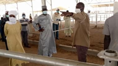 Tchad :  le complexe industriel laitier de Mandélia sera opérationnel d'ici fin 2020