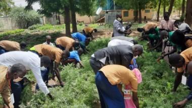 Tchad : 30 élèves formés dans le domaine de l'agriculture