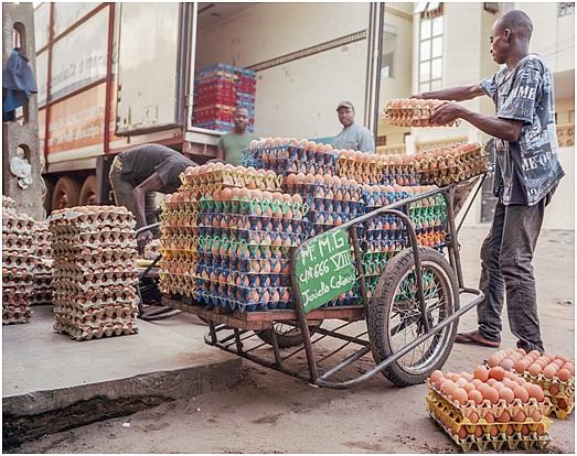 Tchad : hausse des prix des œufs après la fermeture des frontières avec le Cameroun