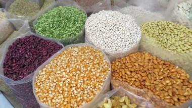 """Agriculture : """"Au Tchad, les semences améliorées sont moins connues"""""""