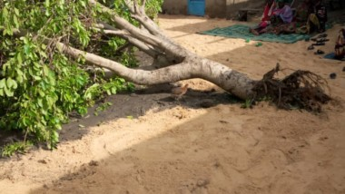 Tchad : au moins un mort après une grosse pluie à N'Djamena