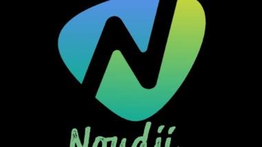 Tchad : se procurer des téléphones et accessoires d'origine en ligne grâce à ''Noudji.com''