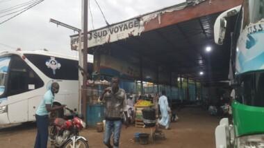 Tchad : avec les mesures barrières, les  agences de voyage se lèchent les doigts
