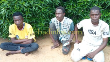 """Tchad : les présumés braqueurs de la boutique """"La Gracieuse"""" à N'Djaména sont arrêtés"""