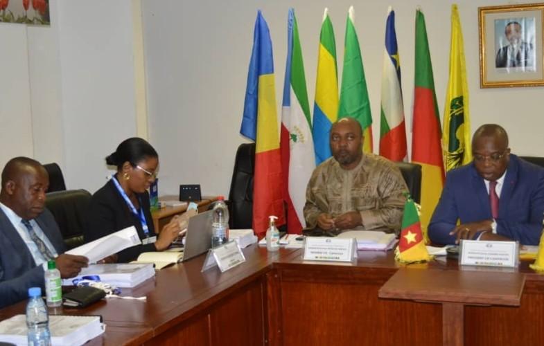 Tchad : le comité inter-Etat de l'union Economique de l'Afrique Centrale est à sa 35ème session ordinaire