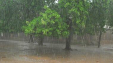 """Tchad : """"Nous aurons encore de grosses pluies"""""""