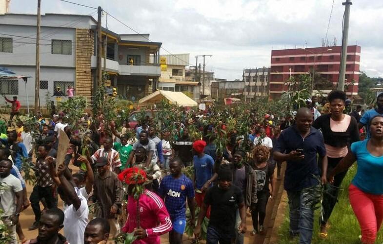 Cameroun: l'ONU lance un appel urgent au dialogue sur la crise anglophone