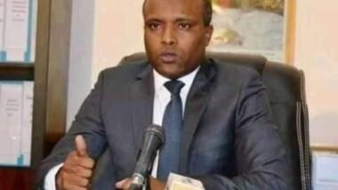 تشاد: وزير الصحة يكشف عن تحليق طائرة مختصة بالرش ، لمكافحة الملاريا