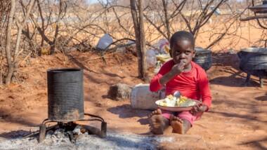 Tchad : 5,9 millions de personnes n'ont pas régulièrement accès à une alimentation saine