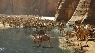 Culture : le Tchad abritera le prochain Forum mondial du tourisme