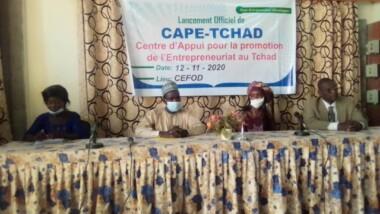 Tchad : Combattre le chômage des jeunes, le crédo de CAPE-TCHAD