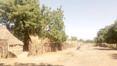 سيلا: عصابة قطاع طرق تقتل رئيس قرية وإصابة رفيقه جندي في قوات الدرك الوطني