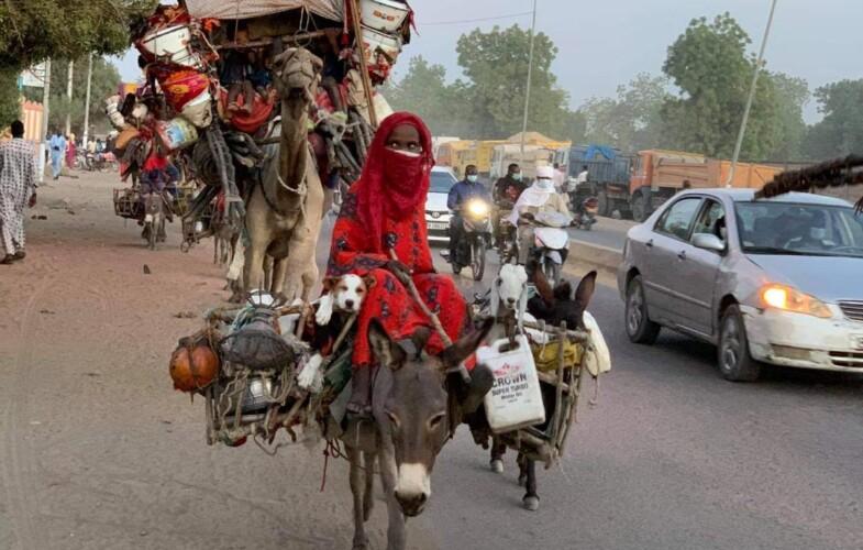 Tchad : Le voyage des nomades au cœur de N'Djamena, une merveille à découvrir