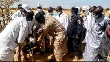 Province : lancement de la campagne de vaccination des bovins et petits ruminants dans le Chari-Baguirmi