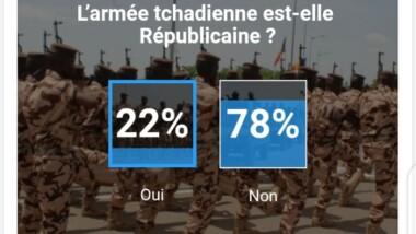 SONDAGE DE LA SEMAINE : voici ce que pensent nos lecteurs de l'armée tchadienne