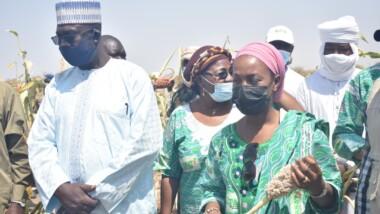 Tchad : la directrice de la division Afrique de l'Ouest et du centre du FIDA en visite de constat des investissements à Dourbali