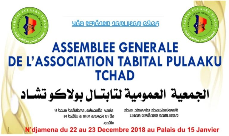 Société : N'Djamena accueille l'assemblée générale des Peuls