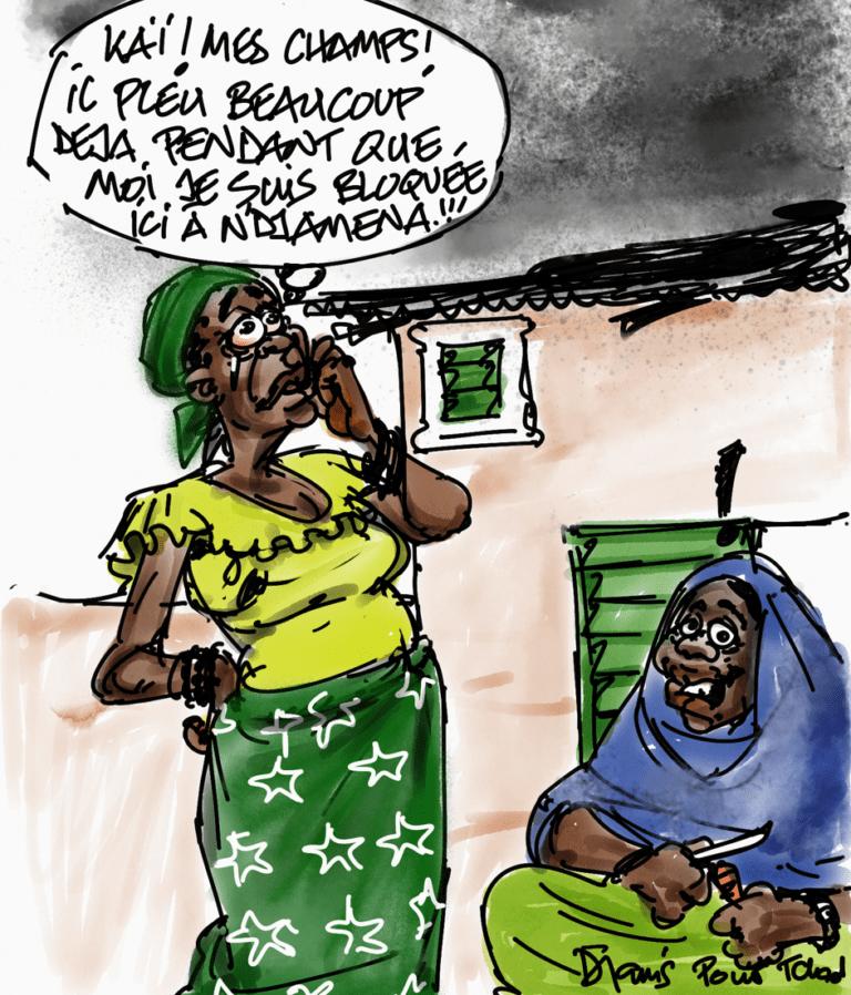 Coronavirus: Delphine, cultivatrice bloquée à N'Djamena