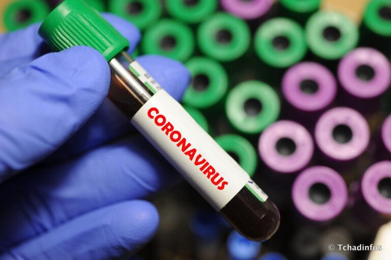 Coronavirus : zéro nouveau cas cofirmé, 5 guérisons et zéro décès