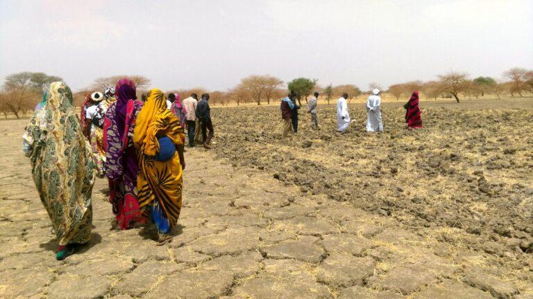 Tchad : création d'un Comité provincial d'action dans le Chari-Baguirmi