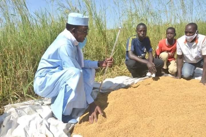 تشاد: رئيس الجمهورية يتوقف في حقل للأرز ويساهم في تشجيع الأطفال على الزراعة