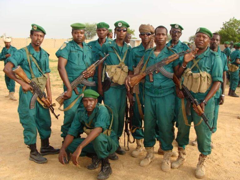Tchad : des éléments de la Garde forestière et faunique attaqués
