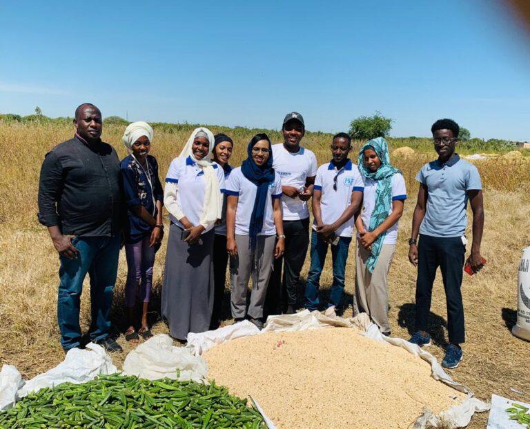 L'association Freedoom récolte plus d'un hectare de riz, fruit de son programme de formation