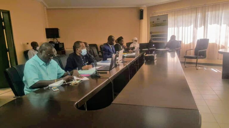Tchad : la promotion de la pêche en zone Cémac au centre d'une visioconférence