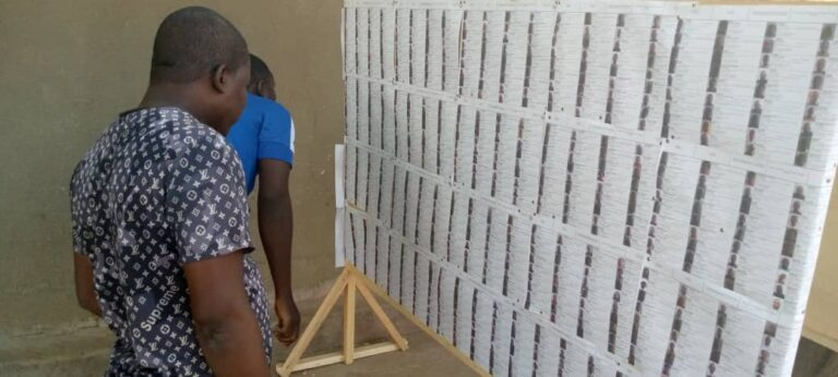 Affichage des listes électorales: peu d'engouement des citoyens au premier jour