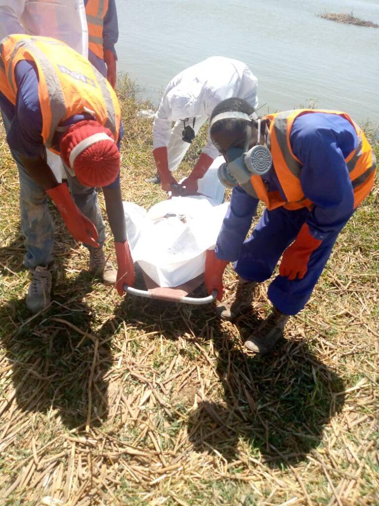 تشاد: العثور على جثة رجل في نهر شاري
