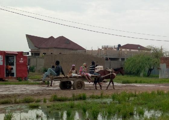 Tchad : enclavés, les habitants des quartiers Gassi et Ambatta utilisent des charrettes pour sortir