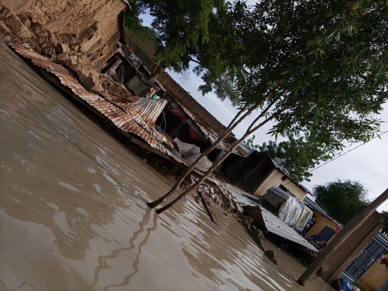 Tchad : une organisation appelle le gouvernement et ses partenaires à intervenir en faveur des sinistrés