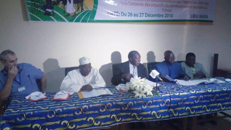 Tchad : des journalistes et communicateurs formés pour être des acteurs de développement durable