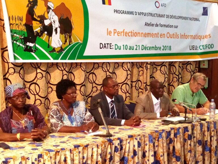 Tchad : le PASTOR renforce les capacités des agents du ministère de l'Elevage en informatique