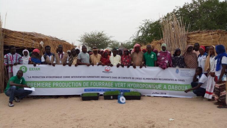 Société : Oxfam au Tchad lance la production hydroponique dans le Lac