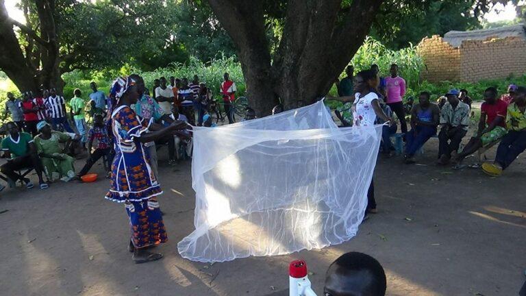 Paludisme : une situation inquiétante et sous-estimée au Tchad