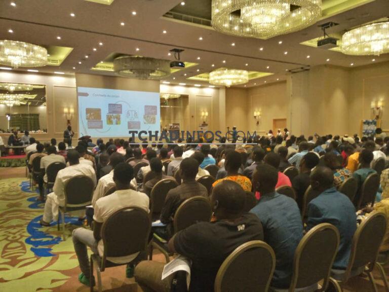 Tchad : Talim, la e-orientation académique de Madet fils
