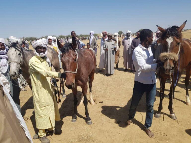 Tchad: La 10è saison de la course hippique bat son plein à Ati