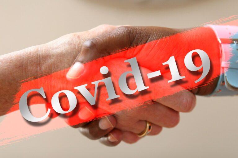 "Coronavirus : Deby crée le fonds spécial ""FS Covid 19"""